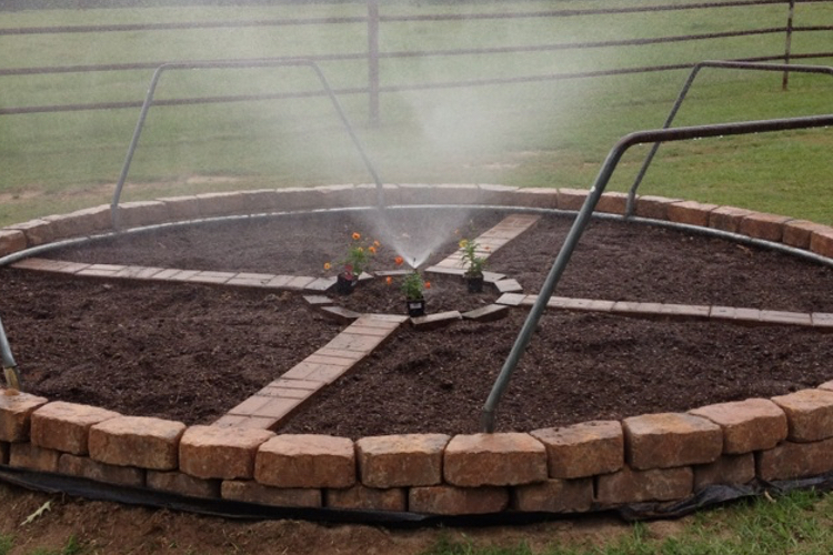 repurpose-old-trampoline-vegetable-patch