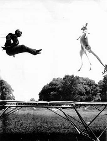 George Nissen jumping on trampoline with kangaroo