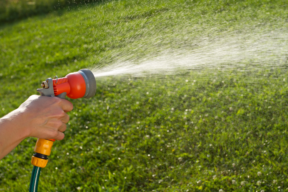 Hose spray.jpg